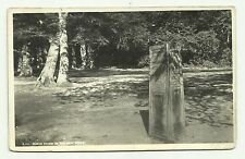 Rufus Stone, New Forest real photo postcard