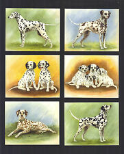 CIGARETTE/TRADE/CARDS. Imperial. Dogs. DALMATIANS. (1999). (Set of 6)