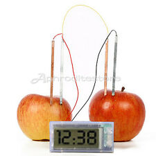 Clock GreenPotato Science Project Experiment Kit kids Lab HomeSchool Curriculum