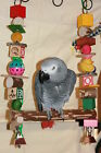"Parrot Swing (For large Parrots) Colorful Toy JK439 15"" to 17"" L 10"" W"