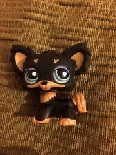 Littlest Pet Shop Perro Chiuahua (C)
