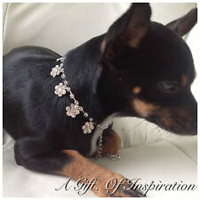 Floral Rhinestone dog/pet Bling jewellery/collar.Sm/Med Length 21cm+9cm ext