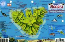 Moorea Dive Map & Coral Reef Creatures Guide Laminated Fish Card by Franko Maps