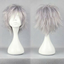 HOT Short Straight Wig Cosplay Party Hair Wigs for Women Men Boy Silvery Gray