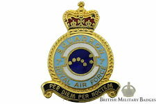 Queens Crown: Royal Air Force 7 Squadron Unit RAF Lapel Badge