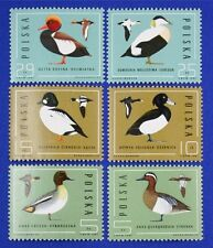 Z75 POLAND 1985 stamp set of 6 Birds Mint NH
