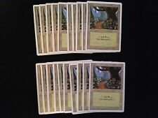 Magic the Gathering MTG**20x Basic Land*SAME ART*Forest*Revised*FREE SHIPPING