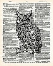 Woodland Owl Art Print 8 x 10 - Dictionary Page - Bird - Animal - Artwork