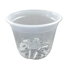 "6"" Crystal Clear Orchid Pot - Quantity 2"