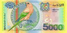 SURINAME 2000 5000 GULDEN BANK NOTE in a Protective Sleeve
