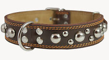 "Genuinel Thick Leather Dog Collar Studded 1.5"" wide 19""-24"" neck Cane Corso"
