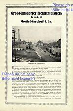Elektrizitätswerk Großröhrsdorf XXL Reklame 1925 Werbung Stromversorgung Strom +