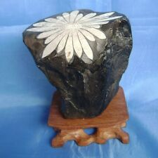 Bonsai Suiseki-Chrysanthemum Stone Handiwork-Nice-looking Blooming Flower 235