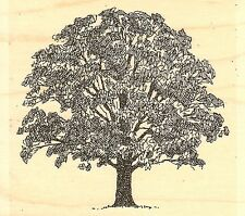 Leafy Tree, Wood Mounted Rubber Stamp IMPRESSION OBSESSION - NEW, E1302