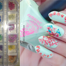 12 Patterns Dry Flowers Charms 3D Decoration Nail Art Manicure Tools w/box