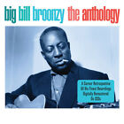 Big Bill Broonzy ANTHOLOGY Best Of 50 Songs ESSENTIAL COLLECTION New Sealed 2 CD