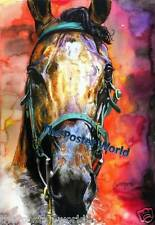 HORSE ANIMALS WILDLIFE WATERCOLOUR PICTURE POSTER WALL ART PRINT NEW
