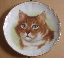 A J L Giftware Collectors Plate Brown And White Cat