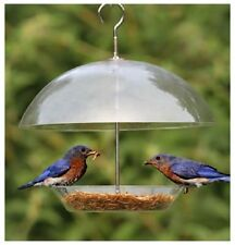 Kingfisher Clear Hanging Dome Seed Nut Mealworm Suet Bird Feeder with Canopy UK