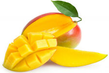 4 Seeds Mango Jinmang fruit sweet and delicious fruits Very Rare Nice Garden