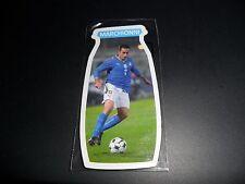 Figurina Magnetica Calamita Calciatori Gadget Danone Mondiali 2010 MARCHIONNI