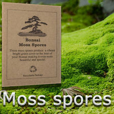 Moss spores for indoor or outdoor, house plant and bonsai tree, Grow Moss