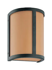 Aged Bronze Energy Star Wall Sconce With Parchment Glass