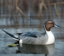 AVERY GREENHEAD GEAR GHG PRO GRADE PG LS PINTAIL FLOATER DUCK DECOYS 6 NEW!