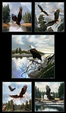 North American Wildlife Eagles in the Wild 24x44 Cotton Fabric Panel