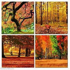 "24"" FRAMED Hot Modern Contemporary Canvas Wall Art Print Painting Autumn Trees"