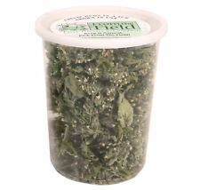 FROM THE FIELD ORGANIC CATNIP BUDS TUB 1 OZ AMERICAN GROWN DRIED FREE SHIP USA