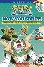 Pokemon: Now You See It! by Scholastic (2015, Paperback)
