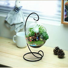 8cm Hanging Glass Flowers Plant Vase Stand Holder Terrarium Container ST2