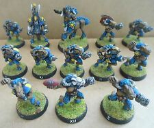 1994 chaos bloodbowl 3rd edition citadel pro painted beastmen équipe animal broo