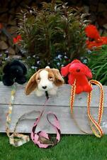 Beach Garden Quilts Dog Leashes 101 Pattern  FREE US SHIPPING