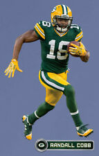 "New RANDALL COBB W/ NAMEPLATE FATHEAD JUNIOR NFL Logo 20""x13"" GREEN BAY PACKERS"