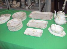 23 Pc Set Antique China Haviland H & C Limoges France Schleiger 71E