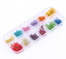 Colors  Nail  Real  Manicure  Decor  Flowers  Tips  Dried  36Pcs  Art  Stickers