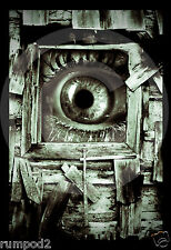 Evil/Crazy Eye in a window poster/print/scary/surreal/weird/monster/macabre