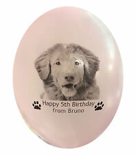 Pet balloons dog photo birthday gift.  Personalised 15 balloons with picture