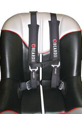BEARD SAFETY HARNESS 2X2 W/PADS AND AUTO STYLE BUCKLE