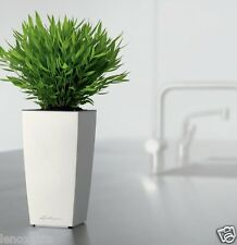 LECHUZA Max CUBI Self-Watering Planter White All-in-one - 10 Inch New