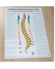 NEU Anatomie Lehr Poster Wirbeltherapie nach Dorn