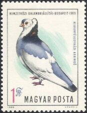 Hungary 1969 Pigeon Exhibition/Birds/Nature/Sports/Pets 1v (n45490)
