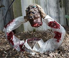 "Halloween Decoration 8.5""x11"" Photo Poster Decoration  Zombie Severed Head #1"