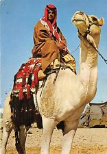 BR4287 Beduin on his Camel in the Neghev    israel