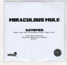 (FC765) Miraculous Mule, Satisfied - 2013 DJ CD