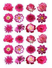 24 glaçages pour gâteau de givrage fée Décorations Comestible Mélange des Fleurs Rose Foncé ND1