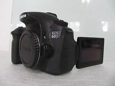 Canon EOS 60D 18.0 Mega Pixel Digital SLR Camera - Black (Body Only))