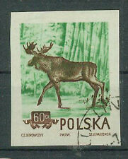 Polen Briefmarken 1954 Wald- und Gebirgstiere Mi.Nr.886 geschn.